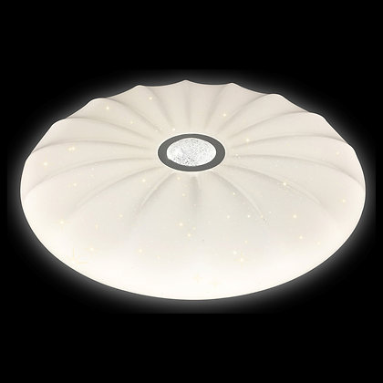 Ceiling light-22xxx CRS-1 series
