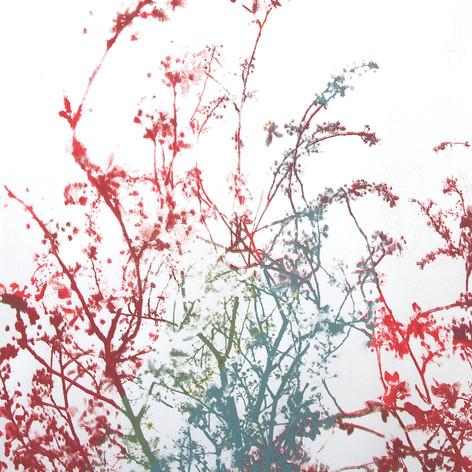 Branch (Vanessa Paris, 2019)