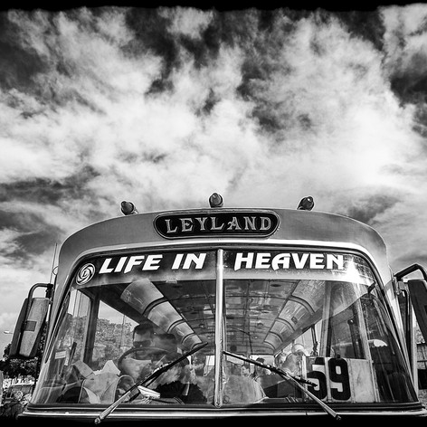 Life in Heaven (Gregory Herpe, 2010)