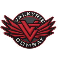 Valkyrie Combat