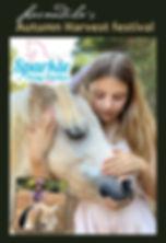 ponies flyer 1 (fb).jpg