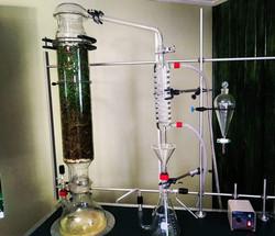 Essentiel oil alambic