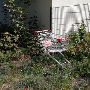 """""""CHANGUITOS"""" - Florencia Giudici observes the trolleys of Berlin in their natural habitat."""
