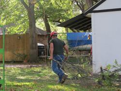 Four Seasons Arbor Care Tree Service