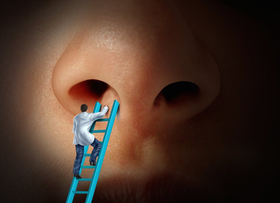 The nose isn't going under the knife like it once did. Lightspring/Shutterstock.com