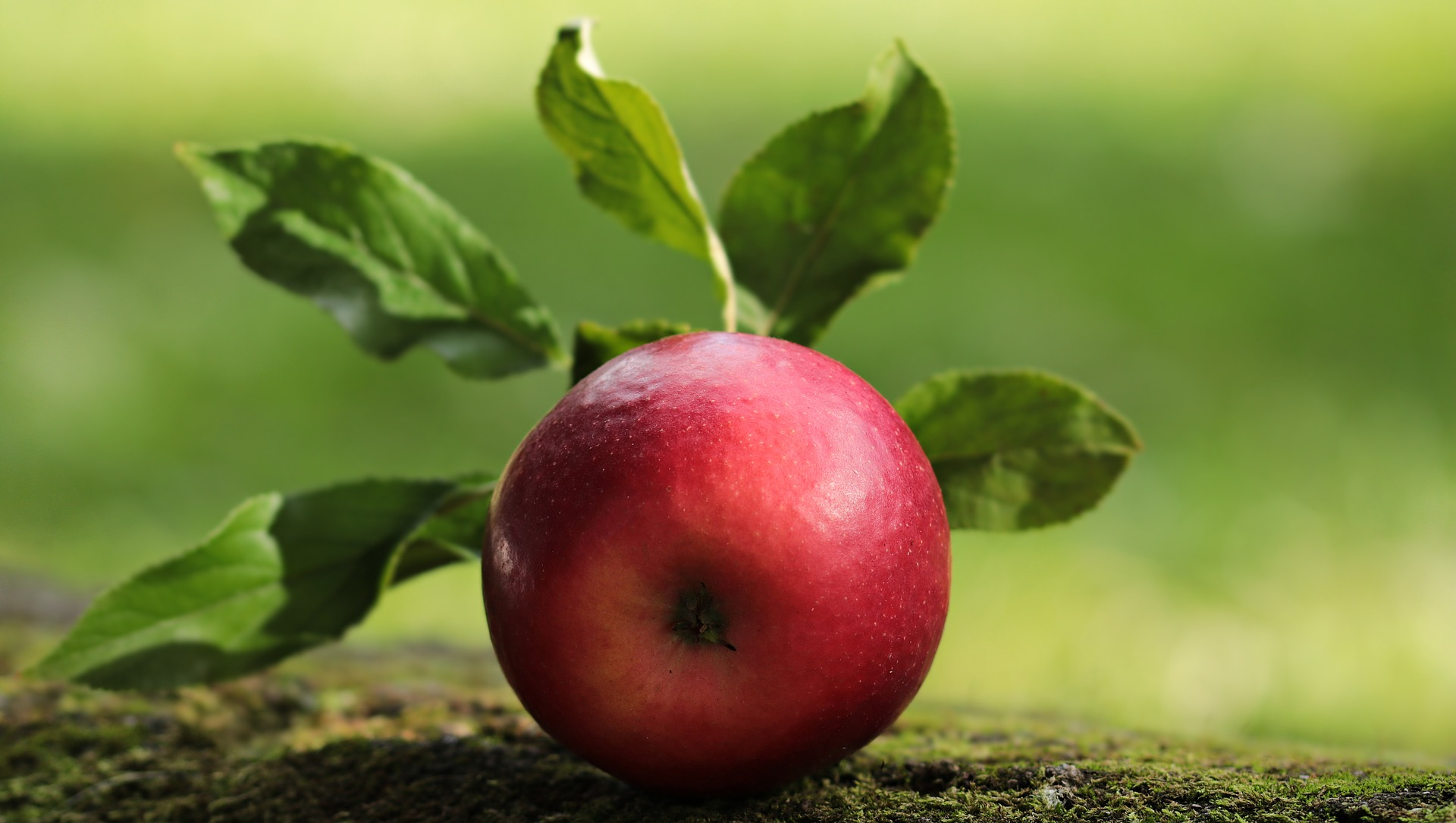 Health - Apple