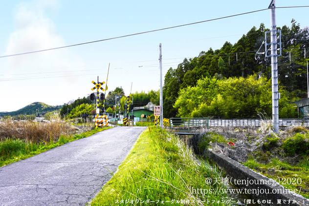 サガナツ 田舎道