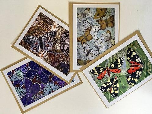 Butterflies Card Collection