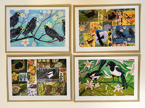 Starling & Magpies Card Collection