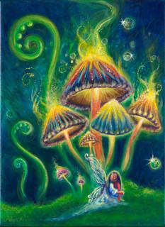 """""""MUSHROOM MAGIC"""""""