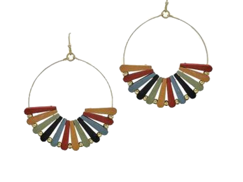 Multi Wooden Earrings