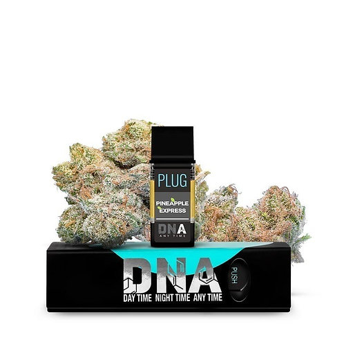 Pineapple Express by PLUG DNA