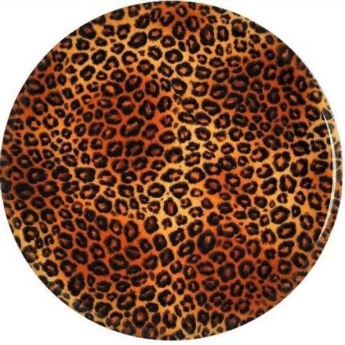 Cheetah - 952