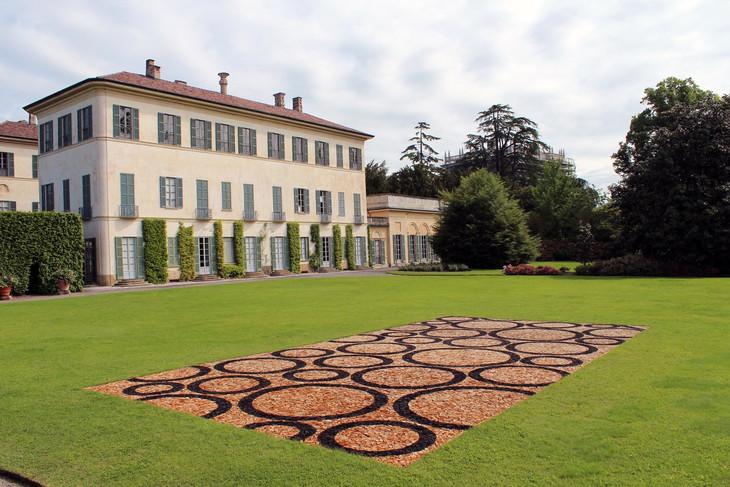 Fagus,+Villa+Panza,+Italy.jpg