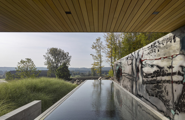Peter Hayes feature wall art for pool