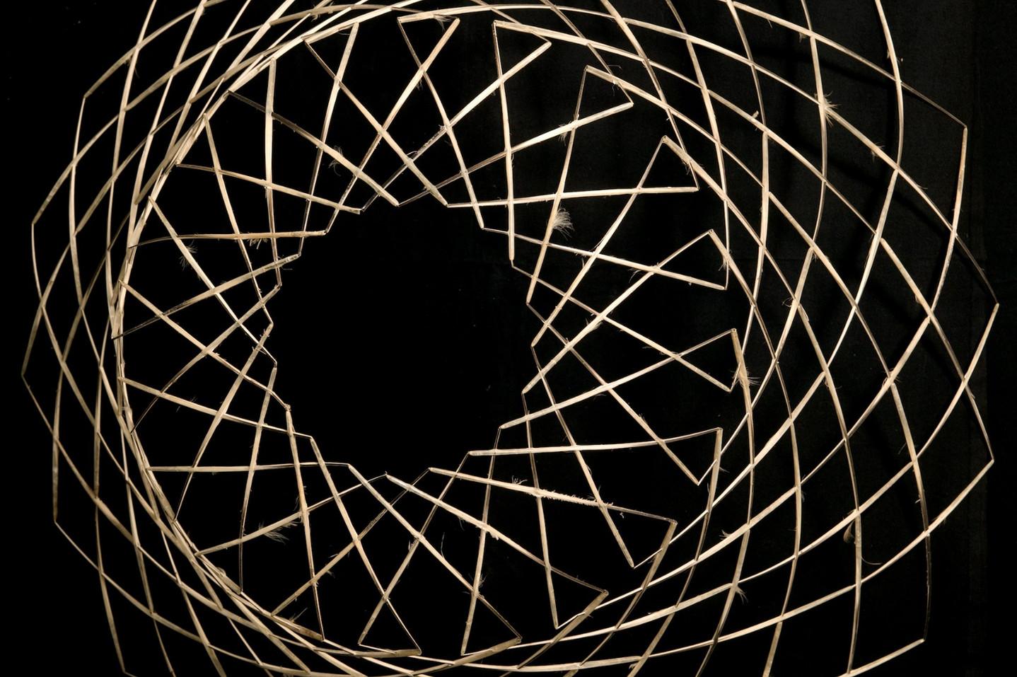 Iris%20detail_edited.jpg