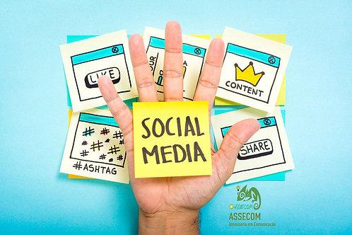 Gerenciamento mensal das Redes Sociais com Criação de Posts