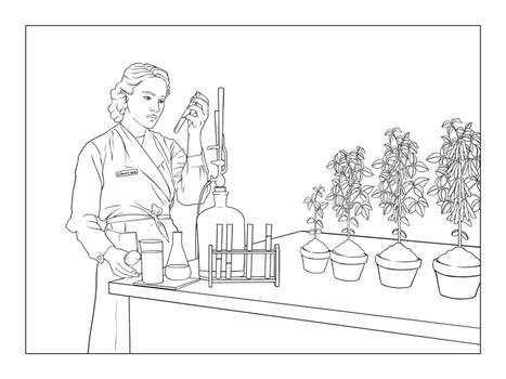 Ilustrações para revista científica
