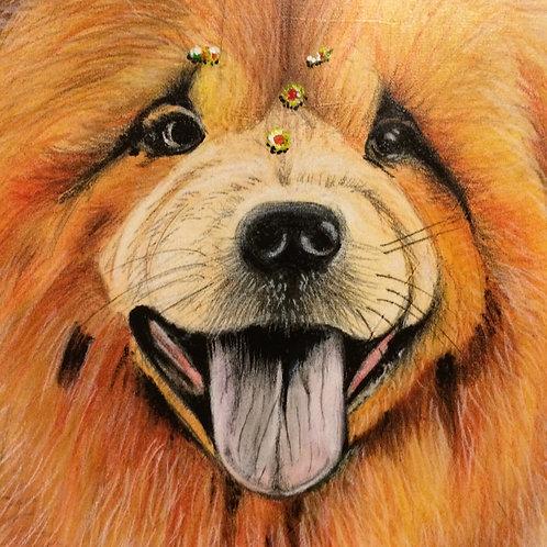 Dog Leão