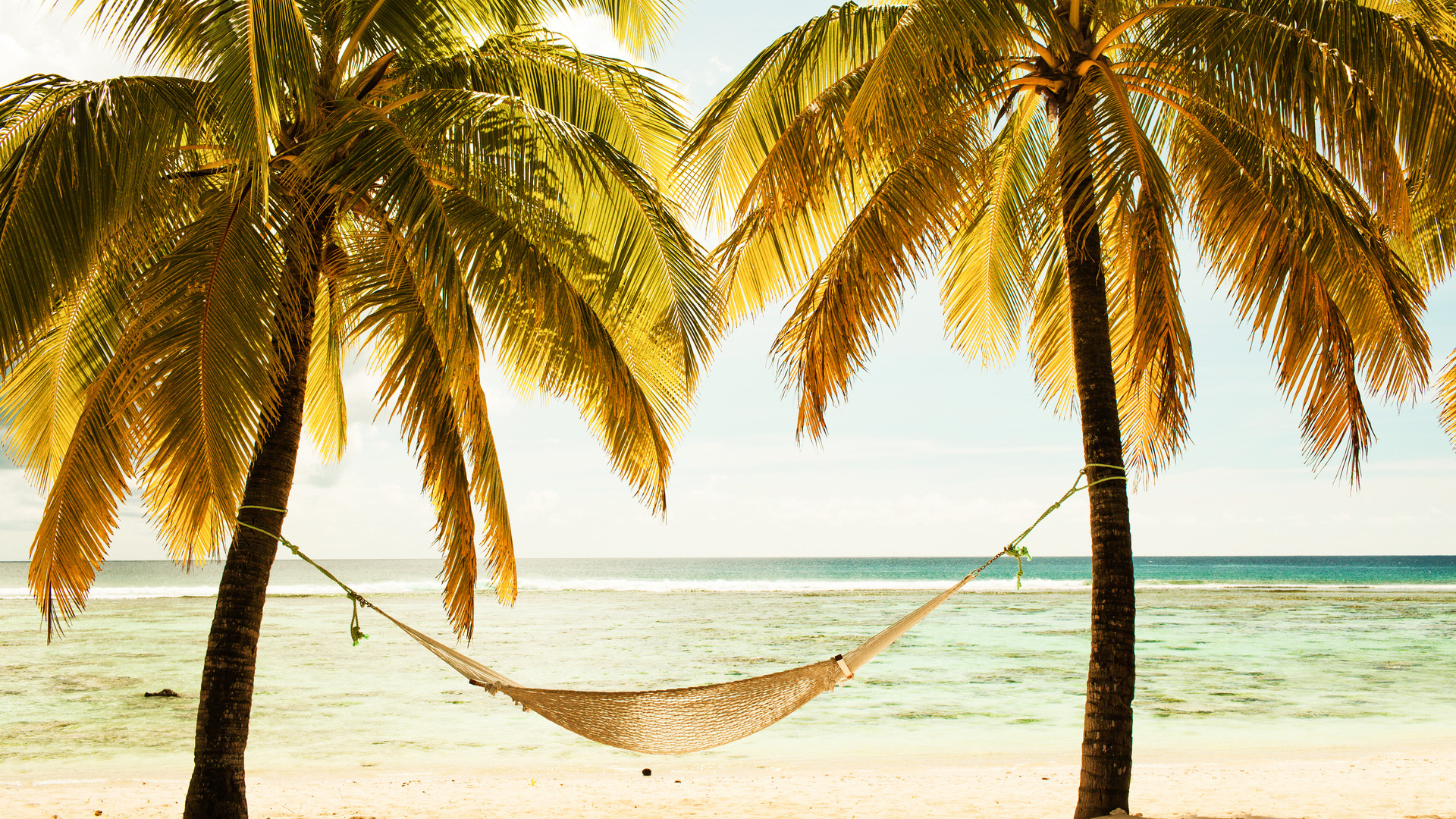 hammock-between-two-palm-trees-on-the-be
