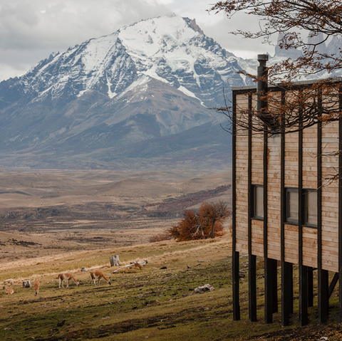 Awasi Patagonia, una experiencia única.