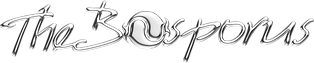 logo silber-1.png
