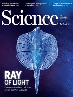 science-353-6295.jpg