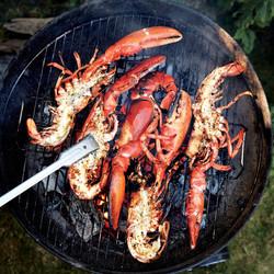grilled-split-lobster_1x1