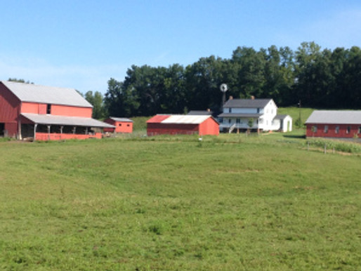My Amish Adventure: My Last Thoughts