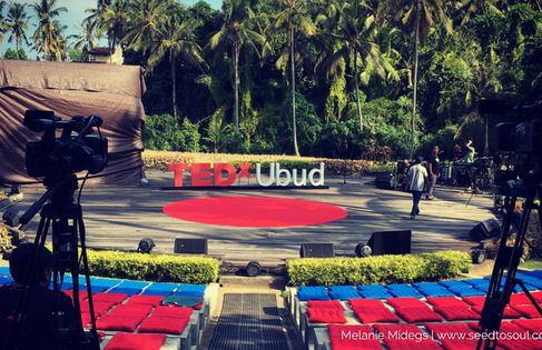 TEDxUbud 2017: The Disruptor For Mindless Business