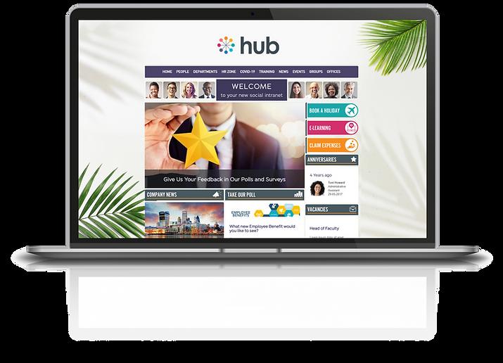 Hub Demo - homepage - feedback.png