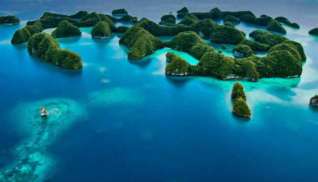 diving-destination-palau.jpg