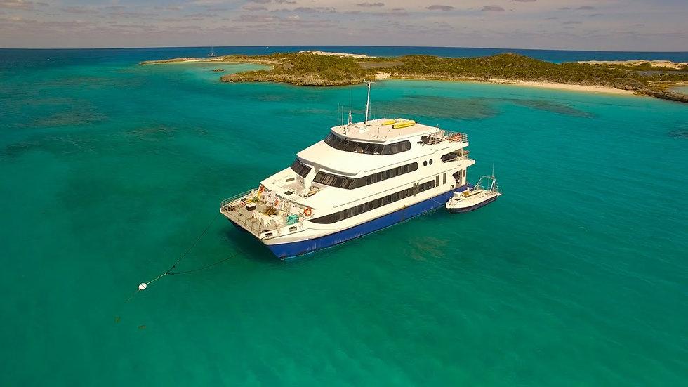 Bahamas Diver Deposit (1 Diver)