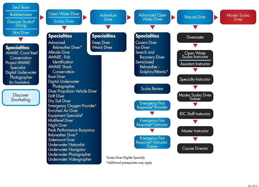 flow chart.jpeg