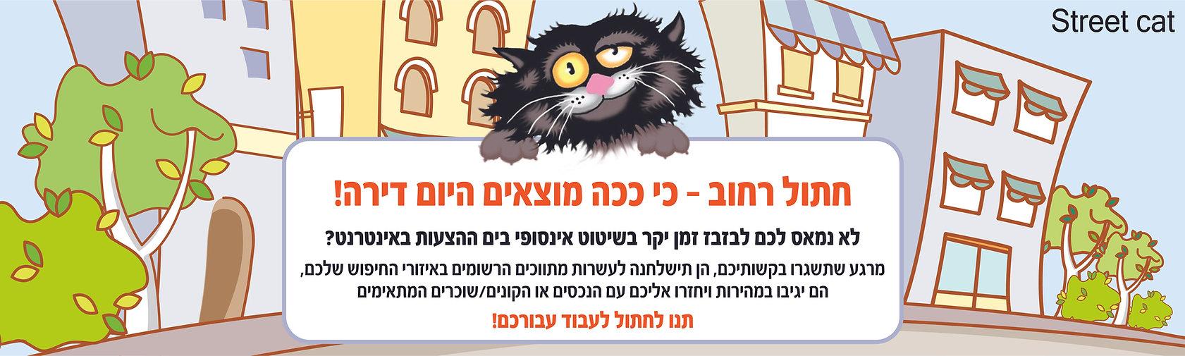 חתול רחוב - כי ככה מוצאים היום דירה!