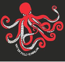 לוגו 2017.png