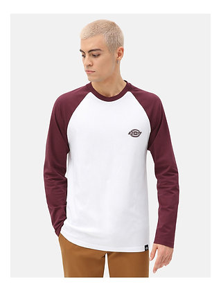 DICKIES t-shirt youngsville bordeaux