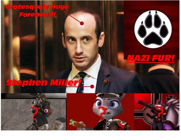 SCOOP: The Fire and the Furry - Stephen Miller's Secret Life (?)