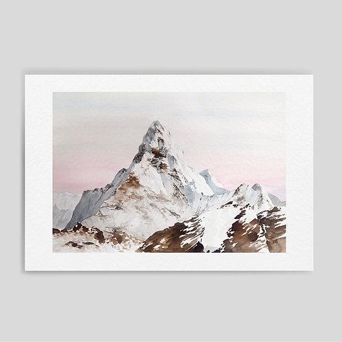 Damianovich: Summit 10