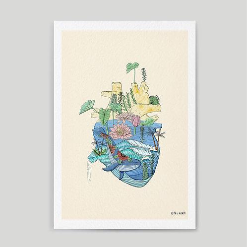 Pampi: Eco Whale