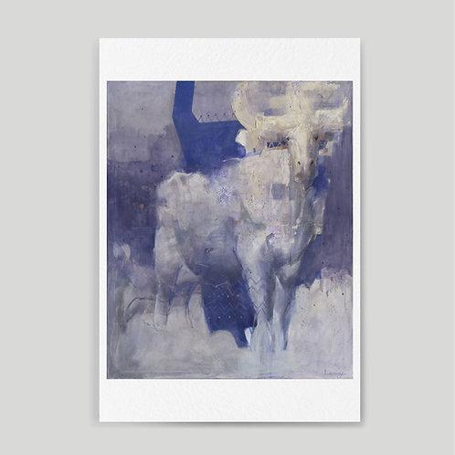 Camila Lacroze: White bull