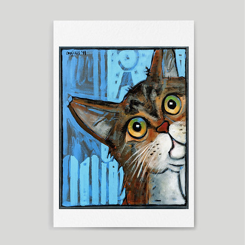 Diego Cousillas: Gato bicheta