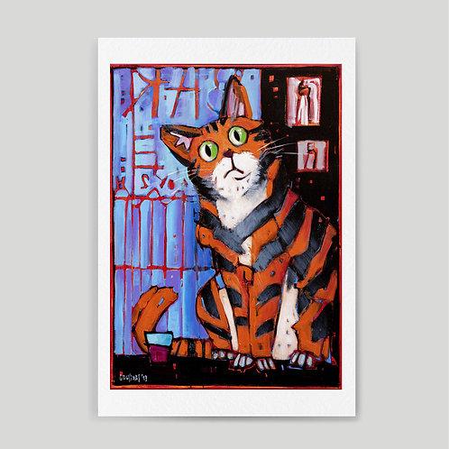Diego Cousillas: Gato tiger