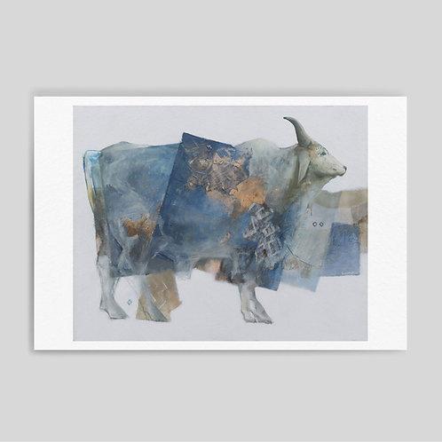 Camila Lacroze: Blue cow