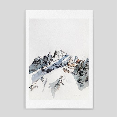 Damianovich: Summit 06