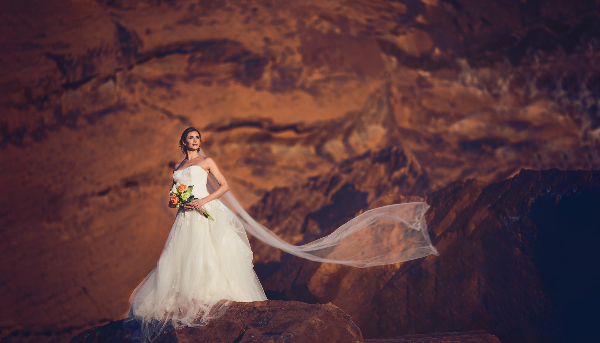 Las Vegas Valley of Fire Beautiful Bride