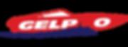 Gelpro Fiberglass Logo