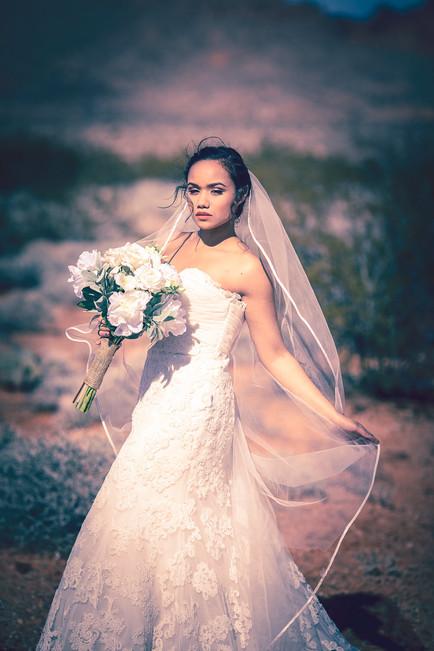 Bride-Wedding-Project-Obscura