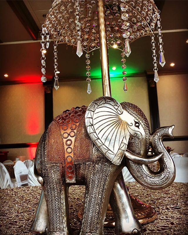Love Elephant Decor at Weddings! 🐘