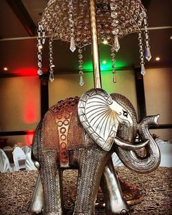 Love Elephant Decor at Weddings! 🐘